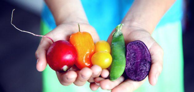 Tilt shift lens photography of five assorted vegetables 1196516